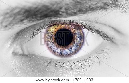 beautiful human eye, macro, close up  blue