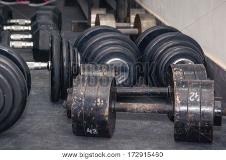 Several dumbbell lies on a floor. Weightlifting. Gym
