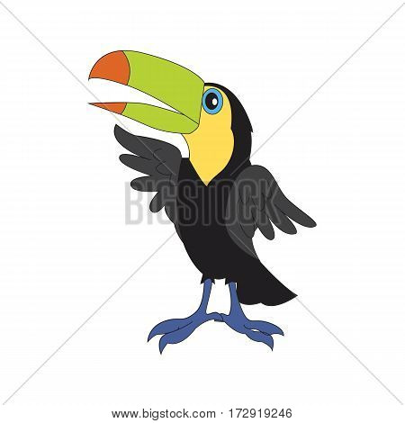 Character illustration. Cute bird toucan. Cartoon personage isolated on white background.