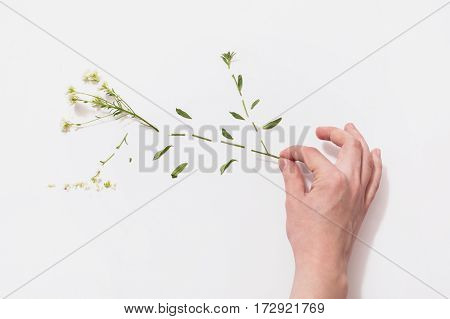 Conceptual photography with a flower. Interesting conceptual idea. The conceptual image on a theme of eco
