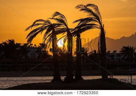 The sun sets behind the mountains in Hurghada Egypt. Type with the sea on dry land.