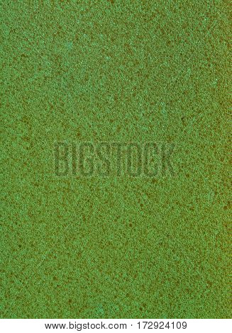 green color texture of sponge as background