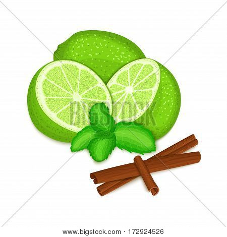 Vector composition of a citrus lime fruit mint leaves and spice. Green limes whole cut and cinnamon stick with pepper mint leaf for design the packaging of juice, breakfast, healthy eating, vegan food