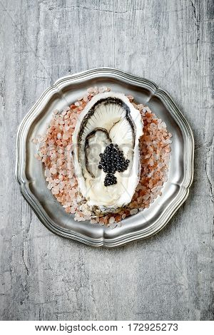Opened oyster with black sturgeon caviar on pink salt in metal plate on grey concrete background. Top view flat lay copy space