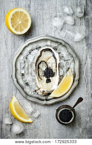 Opened oyster with black sturgeon caviar and lemon on ice in metal plate on grey concrete background. Top view flat lay copy space