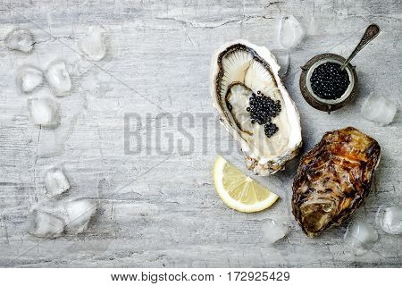 Opened oysters with black sturgeon caviar and lemon on ice on grey concrete background. Top view flat lay copy space