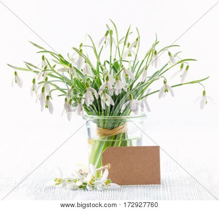 bouquet of snowdrops flowers with paper card on white background
