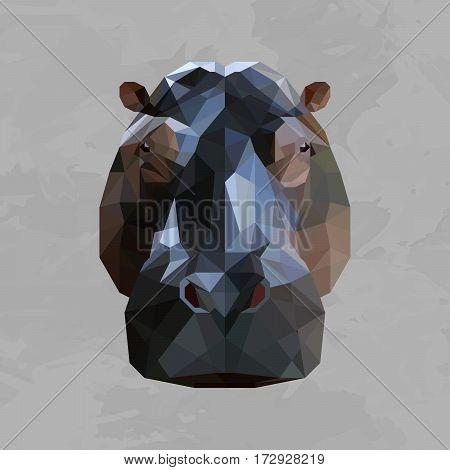 Hippopotamus colored head geometric lines isolated on grey background vintage design element
