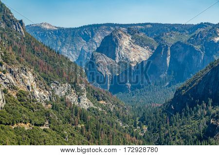 A view of Yosemite Valley from Big Oak Flat Road east towards Cathedral Rocks and Bridalveil Falls.