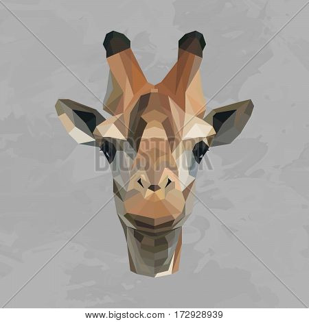Giraffe colored head geometric lines isolated on grey background vintage design element