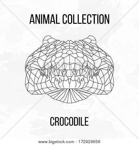 Crocodile head geometric lines silhouette isolated on white background vintage design element