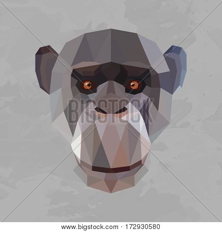 Monkey colored head geometric lines isolated on grey background vintage design element
