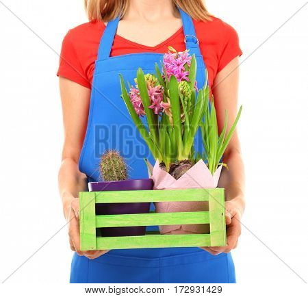Female florist holding box with house plants on white background