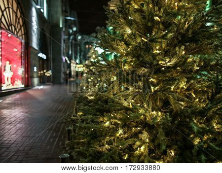 Decorated Christmas tree near storefront in street
