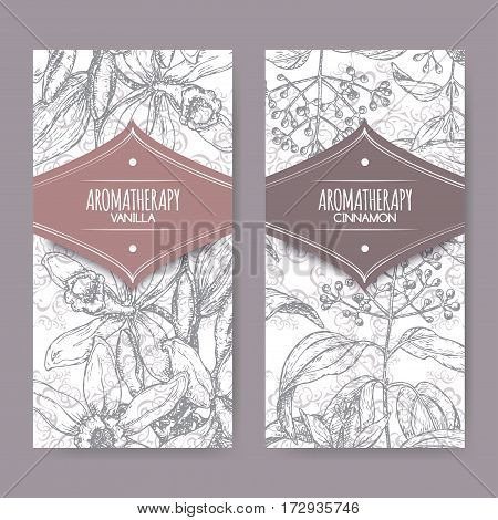 Set of two labels with Vanilla planifolia aka Vanilla and Cinnamomum verum aka cinnamon sketch on elegant lace background. Aromatherapy series.