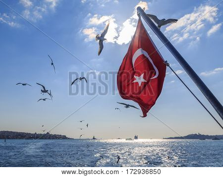 Turkish flag with flying seagulls on kadikoy and eminonu background.