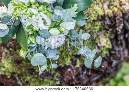 Wedding Bouquet Of White Flowers On The Wood Stump Outdoors , Top View