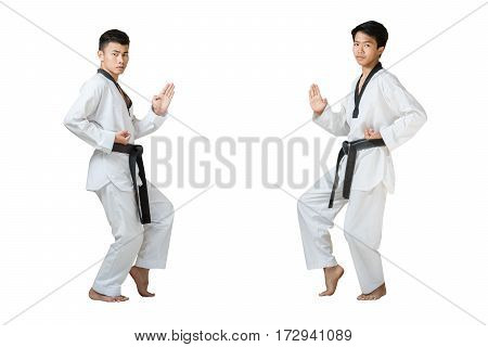 Portrait of two young handsome asian man with taekwondo black belt preparing for fight. Isolated on white background with copy space