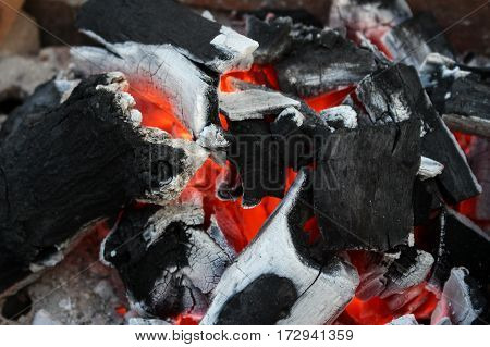 Burning charcoal firewood in the stove, selective focus