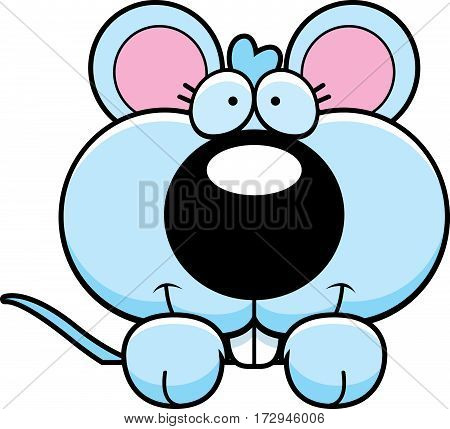 Cartoon Baby Mouse Peeking