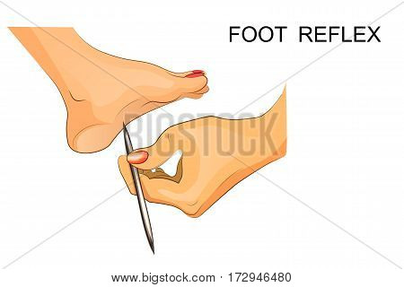 vector illustration of reflexes of the foot.