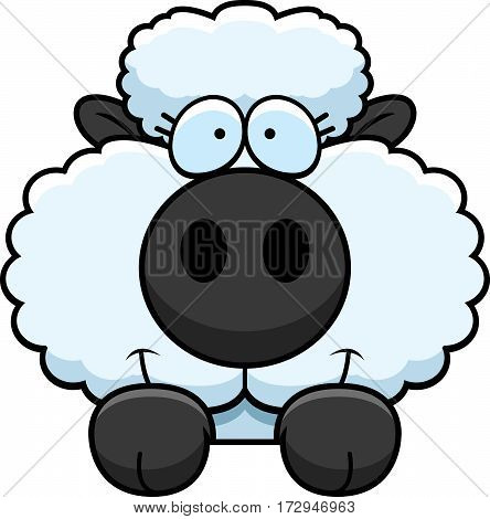 Cartoon Lamb Peeking