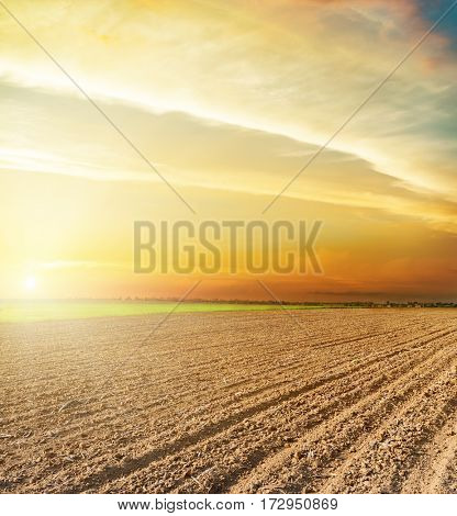 agricultural black plowed field and orange sunset