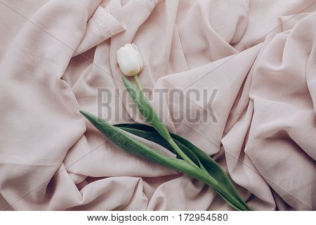 Instagram Spring Flat Lay. Stylish White Tulip On Beige Soft Fabric On Rustic Wooden Table  Top View