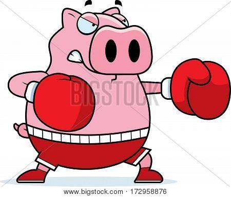 Cartoon Pig Boxing