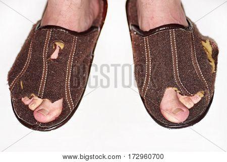 Leaky Brown Slippers.