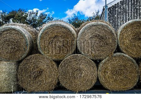 Close up view on bale of hay.