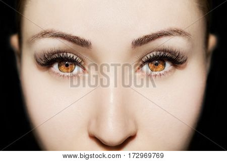 Brown Eye Makeup. Beautiful Eyes Make Up Detail, Perfect Beauty Eyelashes.