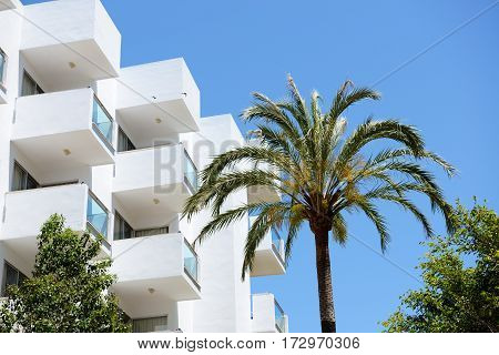 The palm tree and building of hotel Mallorca Spain