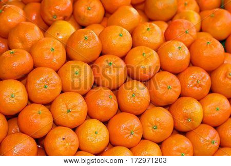 Organic orange mandarins and clementines with peel untreated with chemicals for sale in the healthy and natural food store in winter