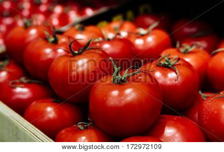 Large tomatoes with green roots, healthy vegetables