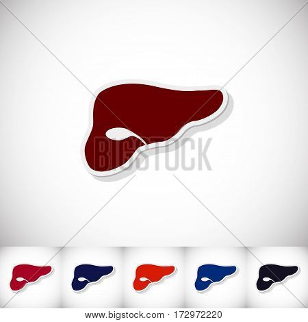 Human liver. Flat sticker with shadow on white background. Vector illustration