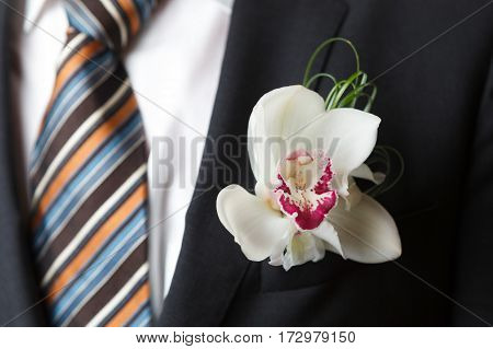 Cymbidium orchid boutonniere on black suit of the groom
