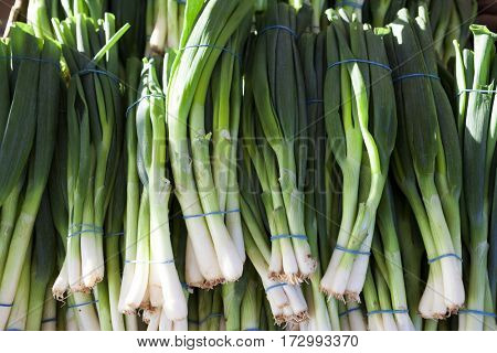 Green onions, fresh bundles lay on the counter of a village market