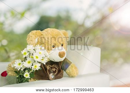 Cute Brown Bear Doll With White Flower Bouquet In Romantic Green Bokeh