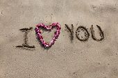 I LOVE You. the words I love you written in sand on the beach with a Hawaiian lei for the heart symbol of love.  poster