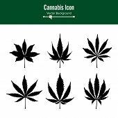 Marijuana Leaf Vector. Green Hemp Cannabis Sativa or Cannabis Indica Marijuana Leaf Isolated On White Background. Medical Plant poster