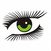 vector green eye with long lashes. vector illustration poster