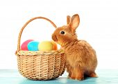 Cute fluffy bunny and wicker basket with colourful Easter eggs on white background poster