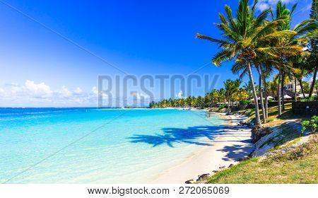 amazing tropical beach scenery. Mauritius island, Bel mare beach