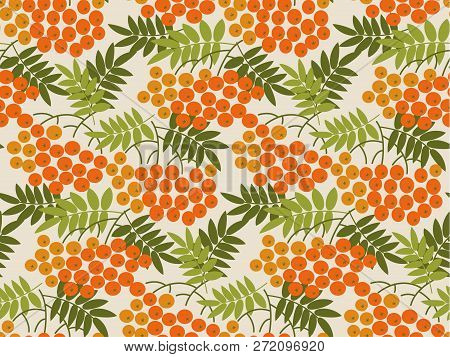 Rowanberry Vector Seamless Pattern. Color Texture With Rowan Branches. Vintage Background Fill With