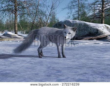 3d Rendering Of Arctic Fox Search For Food