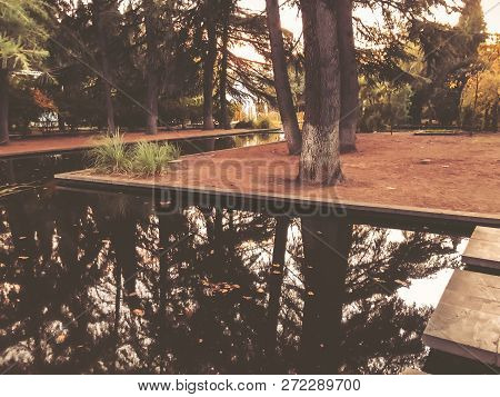 Autumn In The Park, Trees, Reeds Near The Pond, Reflection Of Trees In A Pond. Falling Foliage. Colo