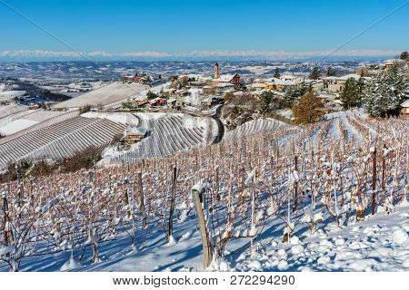 View of vineyards on snowy hills and small town of Treiso on background under blue sky in Piedmont, Northern Italy.