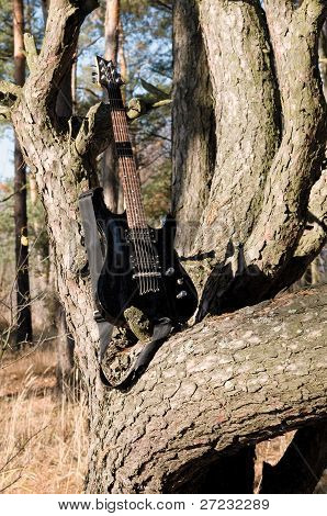 Guitar On The Tree