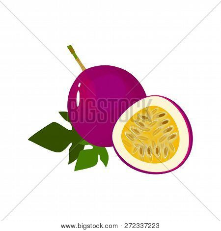 Passionfruit Isolated On White Background. Bright Vector Illustration Of Colorful Half And Whole Of